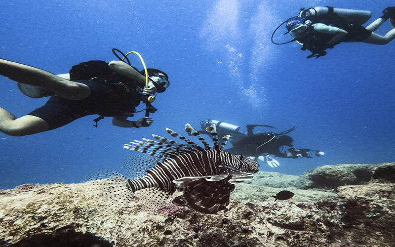 Kas, the perfect destination for divers